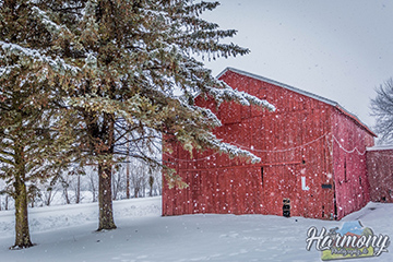 Barn in a wintry landscape
